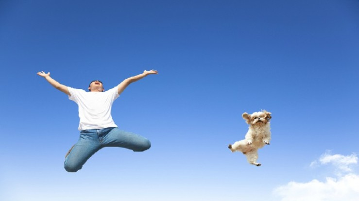 man-and-dog-jumping-in-air